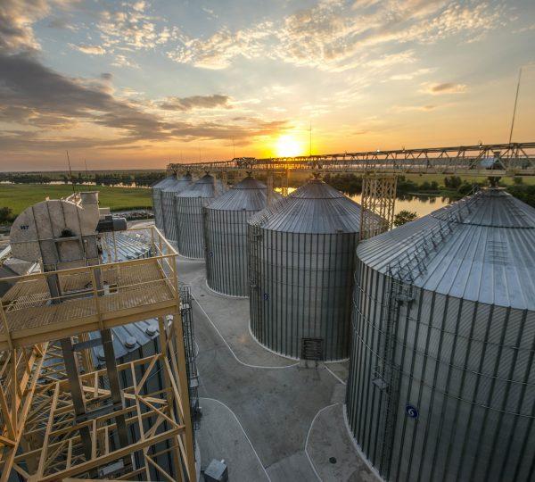 grain elevator opt
